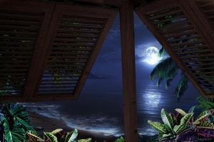 Tropical Dream Moon View by Murray Henderson