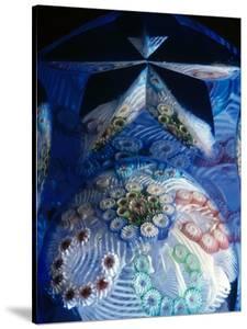 Murrine Glass Paperweight