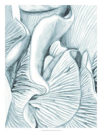 Mushroom Gills III-Naomi McCavitt-Giclee Print