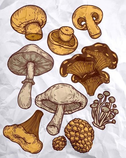 Mushroom Variation-Color Me Happy-Art Print
