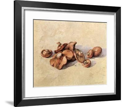 Mushrooms-Joaquin Moragues-Framed Art Print