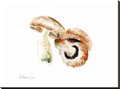 Mushrooms-Suren Nersisyan-Stretched Canvas Print