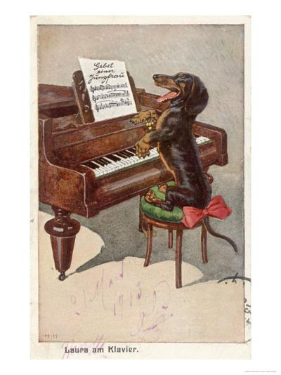 Musical Dachshund Plays a Tune on the Piano--Giclee Print