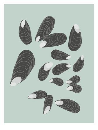 https://imgc.artprintimages.com/img/print/mussels_u-l-f8ktuh0.jpg?p=0