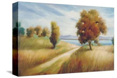 My Favorite Place-Marc Lucien-Stretched Canvas Print