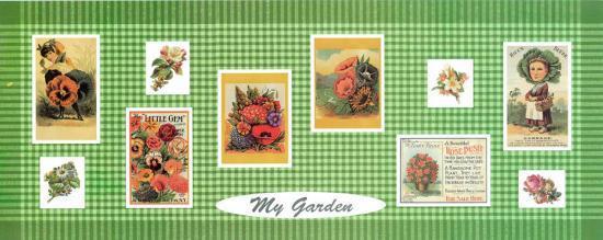 My Garden--Art Print