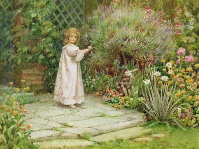 My Garden-William Ashburner-Giclee Print