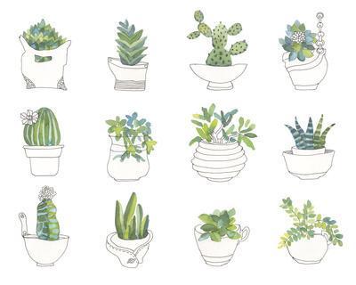 https://imgc.artprintimages.com/img/print/my-indoor-garden_u-l-f970qc0.jpg?p=0