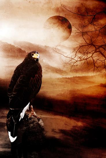 My Land-Alexandra Stanek-Photographic Print