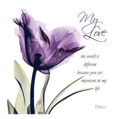 My Love, Purple Tulip-Albert Koetsier-Art Print