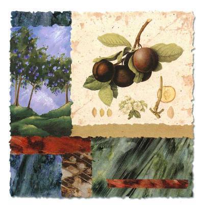 My Orchard-Monica Walley-Art Print