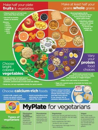 My Plate for Vegetarians Poster