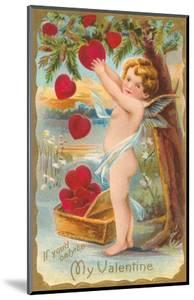 My Valentine, Cupid Picking Hearts