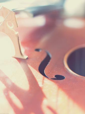 Cello Close Up