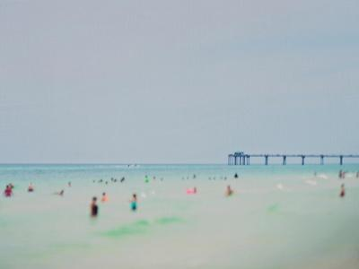 Dreams of The Gulf Coast