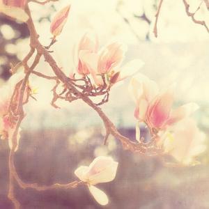 Sunshine Smile by Myan Soffia
