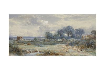 A View on Holmwood Common, Surrey