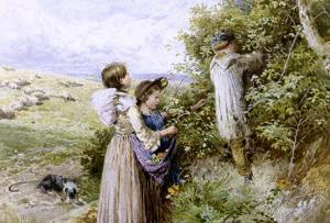 Collecting Flowers by Myles Birket Foster