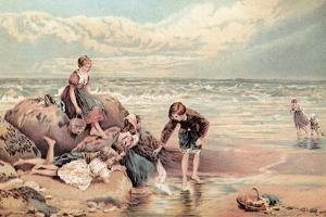 The Dead Sea-Bird by Myles Birket Foster