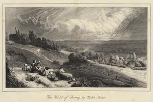 The Weald of Surrey by Myles Birket Foster