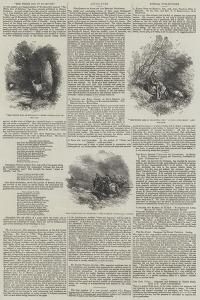 The White Doe of Rylstone by Myles Birket Foster