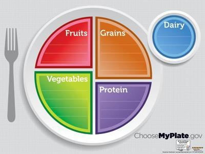MyPlate Dry Erase Laminated Educational Menu Poster--Laminated Poster