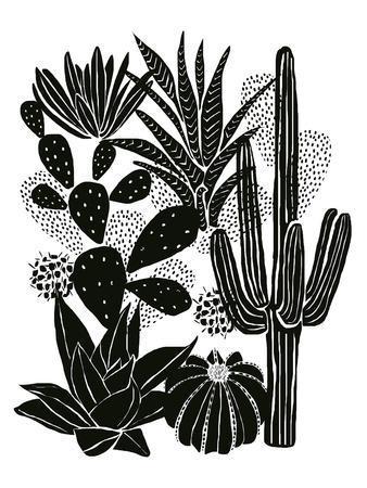 Monochrome Cacti