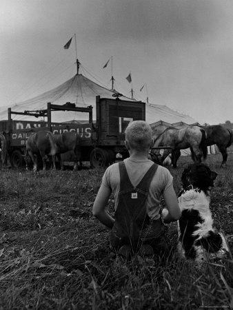 Young Boy and His Dog Watching the Circus Tents Being Set Up