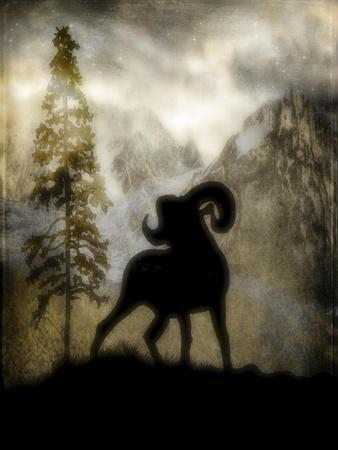 https://imgc.artprintimages.com/img/print/mystic-big-horn_u-l-q12v1vq0.jpg?p=0