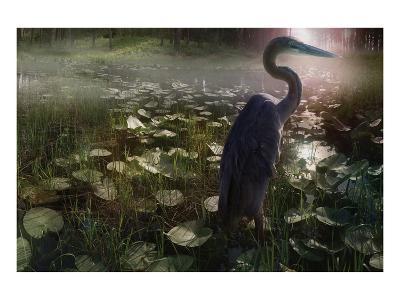 Mystic Heron-Steve Hunziker-Art Print