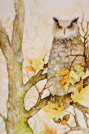 https://imgc.artprintimages.com/img/print/mystic-woodland-ii_u-l-pwja0d0.jpg?p=0
