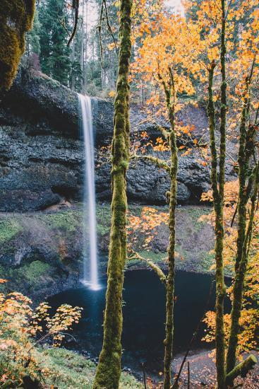 Mystical Autumn Scene at South Falls, Silver Falls State Park, Oregon-Vincent James-Photographic Print