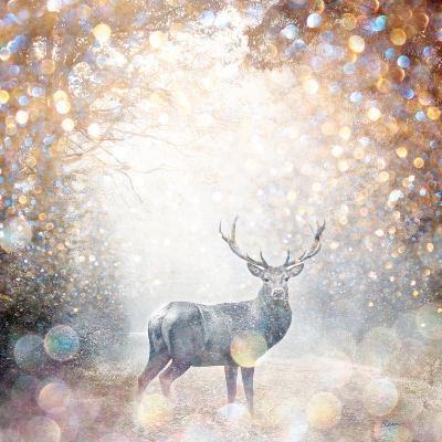 Mystical Forest 1-Beau Jakobs-Art Print