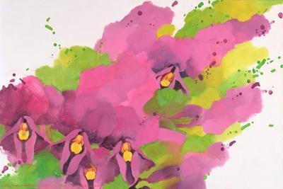 Violets, 1995