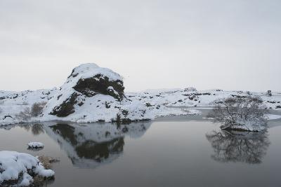 Myvatn, North Iceland-Julia Wellner-Photographic Print