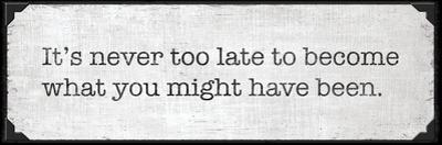 Never Too Late by N. Harbick