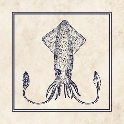 Squid Sq by N. Harbick