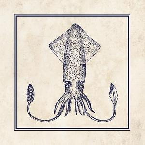 Squid Sq by N^ Harbick