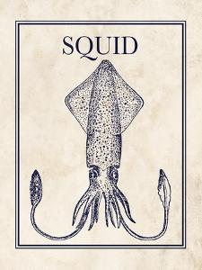 Squid by N. Harbick