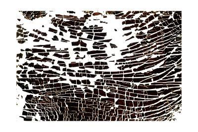 Na_4 [Wave], 2002-Kika Pierides-Giclee Print