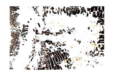 https://imgc.artprintimages.com/img/print/na-7-take-flight-2002_u-l-pt2pbg0.jpg?p=0