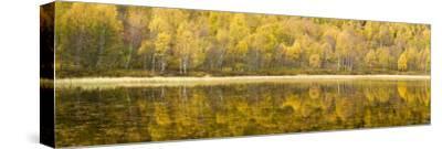 Autumn Reflections, Cairngorms National Park, Highlands, Scotland, UK