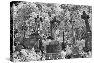 Infrared Image of the Graves in Highgate Cemetery, London, England, UK