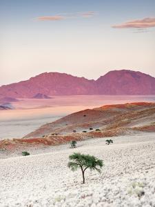 Sunrise, Namibia, Africa by Nadia Isakova