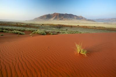 Namib Desert, Namibia-Ben Cranke-Photographic Print