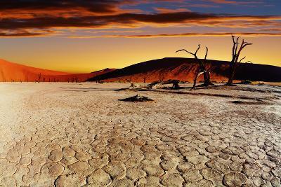 Namib Desert, Sossusvlei, Namibia-DmitryP-Photographic Print