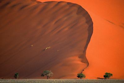 Namib Desert-Vittorio Ricci - Italy-Photographic Print