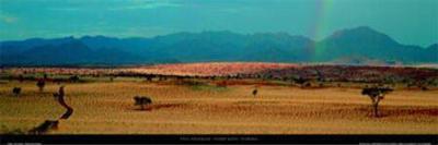 Namib Rand - Namibia-Paul Franklin-Art Print