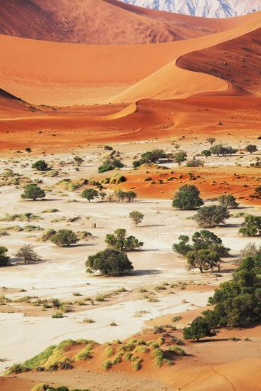 Namib-Andrushko Galyna-Photographic Print