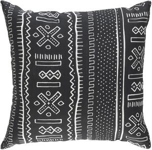 Namibia 18 x 18 Pillow Cover